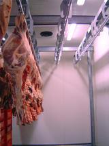 Conservazione di carne o pesce